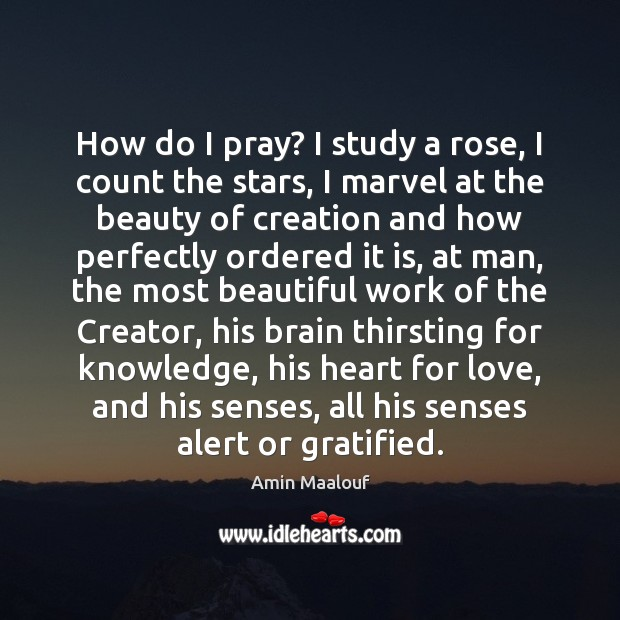 How do I pray? I study a rose, I count the stars, Amin Maalouf Picture Quote
