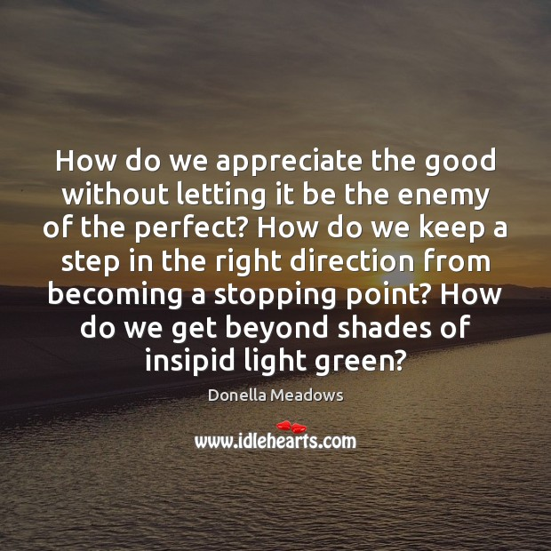 How do we appreciate the good without letting it be the enemy Donella Meadows Picture Quote