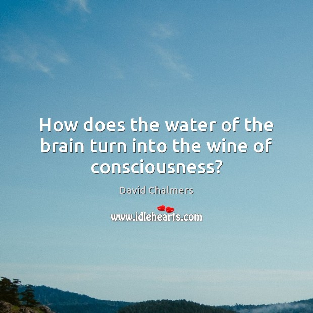 How does the water of the brain turn into the wine of consciousness? Image