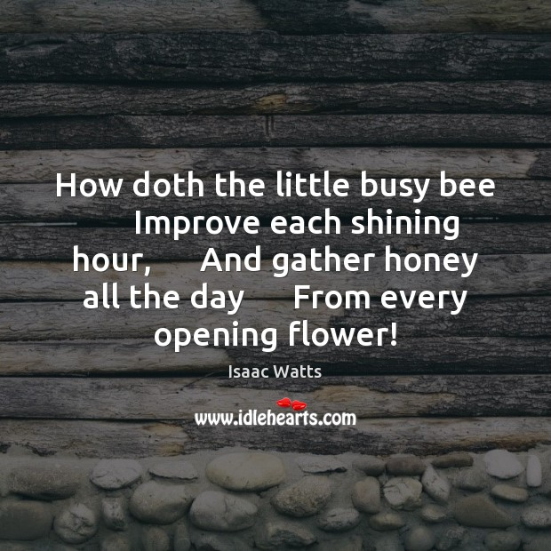 Image, How doth the little busy bee      Improve each shining hour,      And gather