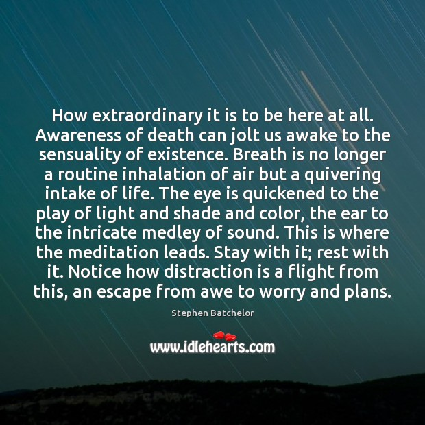 Image, How extraordinary it is to be here at all. Awareness of death