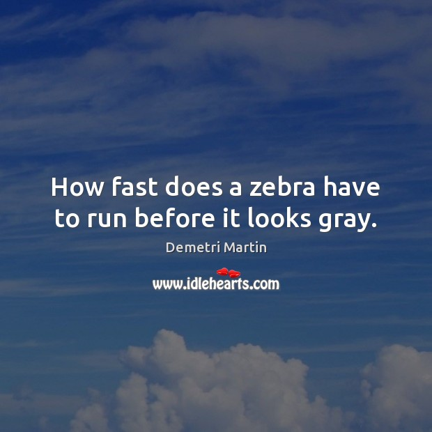 How fast does a zebra have to run before it looks gray. Demetri Martin Picture Quote