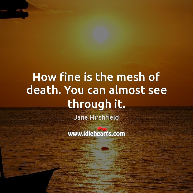 How fine is the mesh of death. You can almost see through it. Image