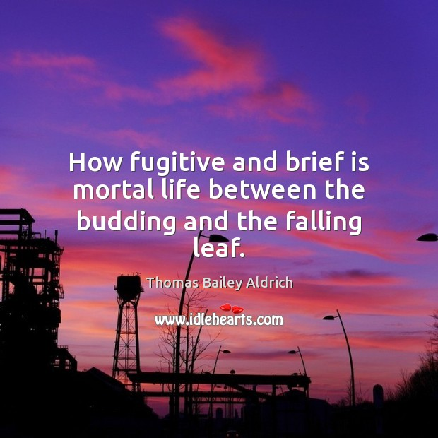 How fugitive and brief is mortal life between the budding and the falling leaf. Image