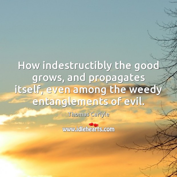 How indestructibly the good grows, and propagates itself, even among the weedy Image