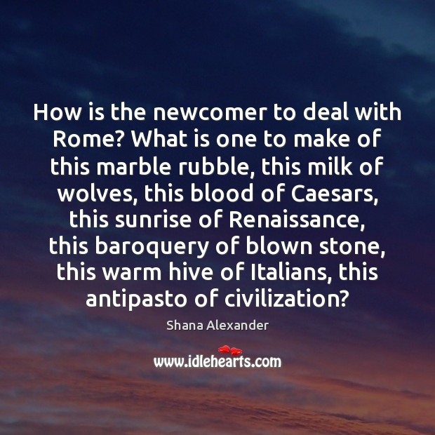 Image, How is the newcomer to deal with Rome? What is one to