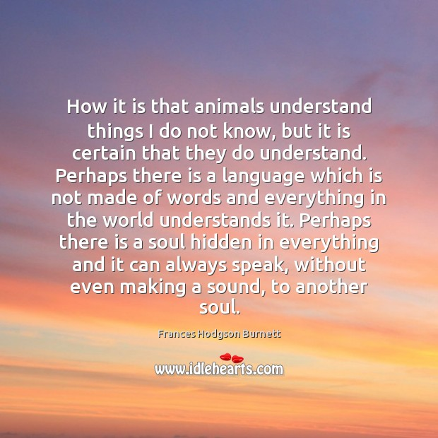 How it is that animals understand things I do not know, but Frances Hodgson Burnett Picture Quote
