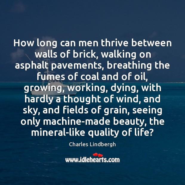 Image, How long can men thrive between walls of brick, walking on asphalt