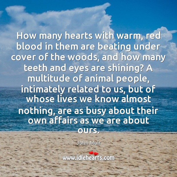 How many hearts with warm, red blood in them are beating under John Muir Picture Quote