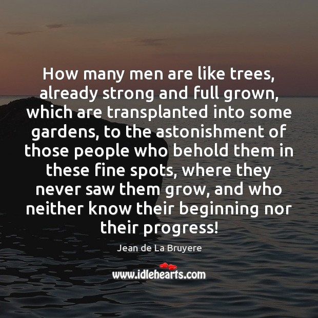 How many men are like trees, already strong and full grown, which Image