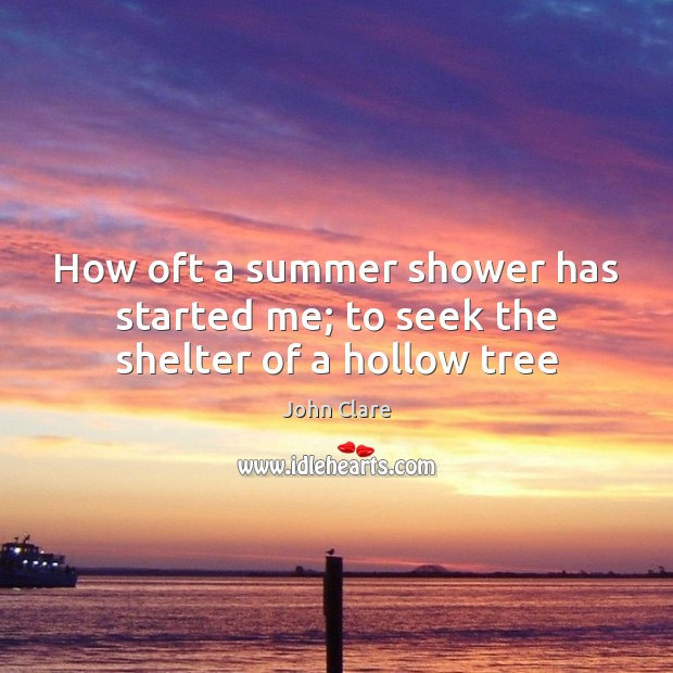 Image, How oft a summer shower has started me; to seek the shelter of a hollow tree