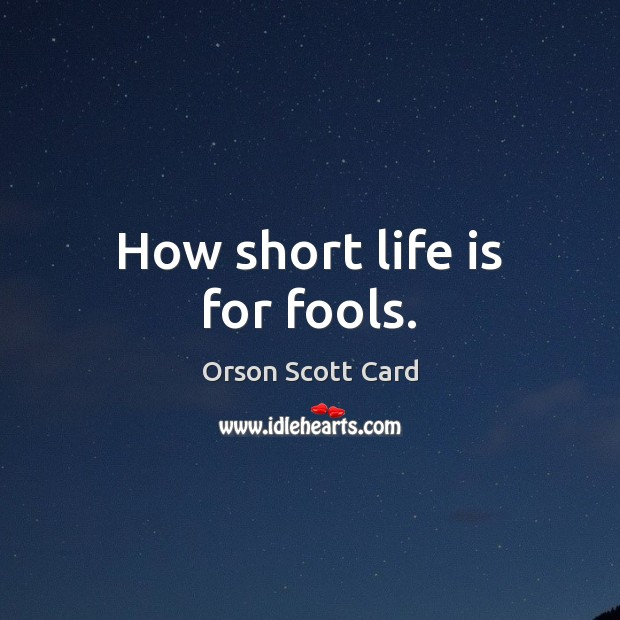 How short life is for fools. Image