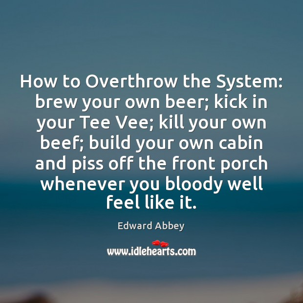 How to Overthrow the System: brew your own beer; kick in your Image