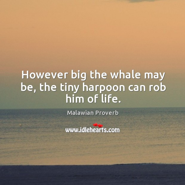 However big the whale may be, the tiny harpoon can rob him of life. Malawian Proverbs Image