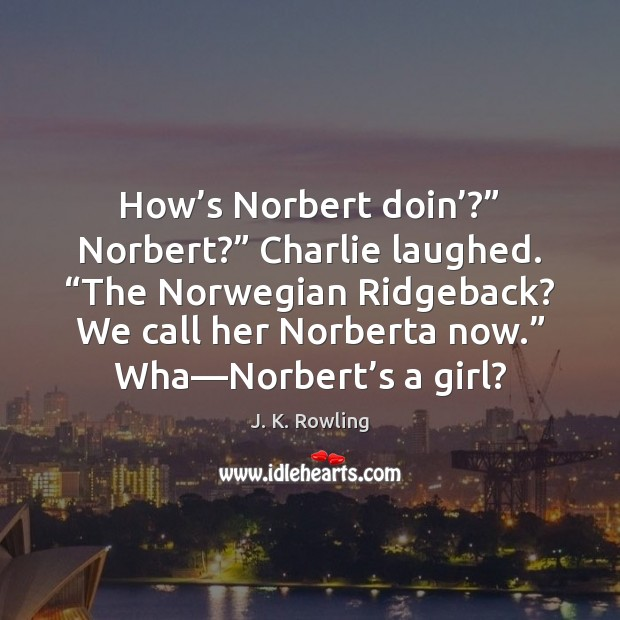 "How's Norbert doin'?"" Norbert?"" Charlie laughed. ""The Norwegian Ridgeback? We call Image"