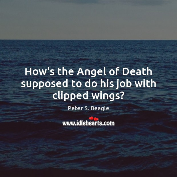 Image, How's the Angel of Death supposed to do his job with clipped wings?