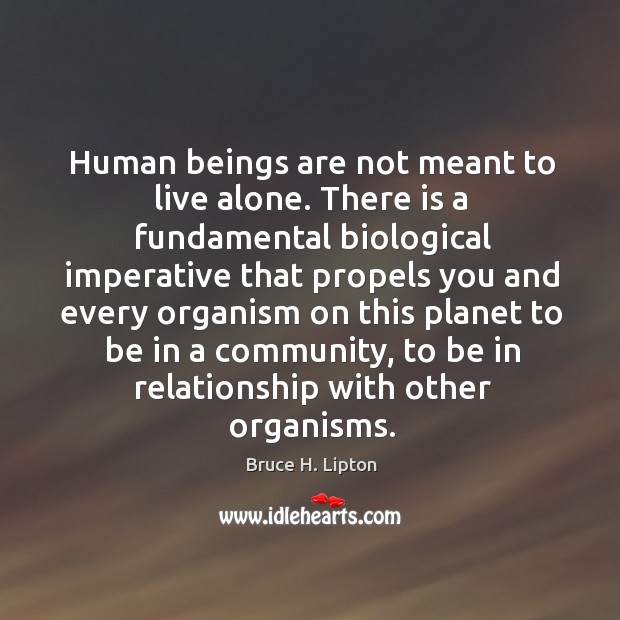 Human beings are not meant to live alone. There is a fundamental Bruce H. Lipton Picture Quote