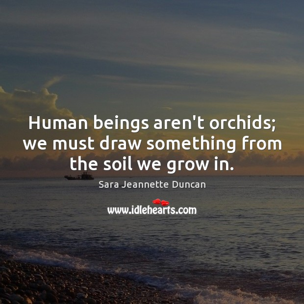 Human beings aren't orchids; we must draw something from the soil we grow in. Image