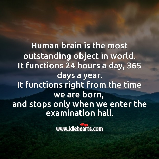 Human brain is the most outstanding object in world. Funny Messages Image