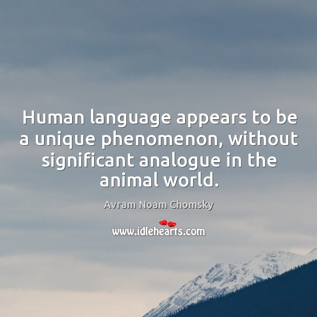 Image, Human language appears to be a unique phenomenon, without significant analogue in the animal world.