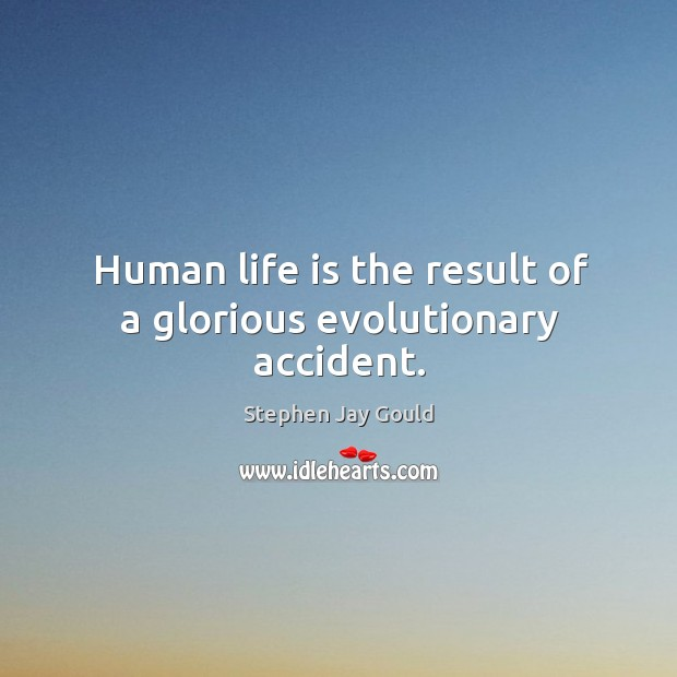 Image, Human life is the result of a glorious evolutionary accident.