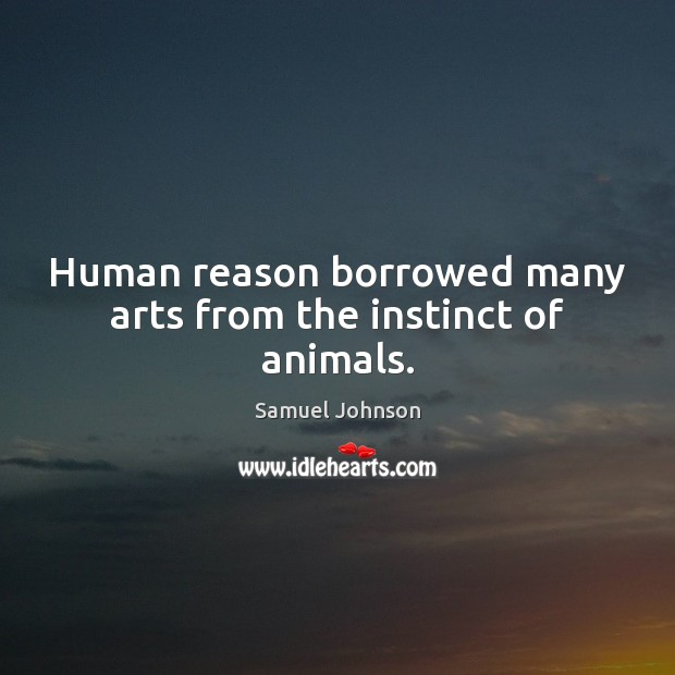 Image, Human reason borrowed many arts from the instinct of animals.