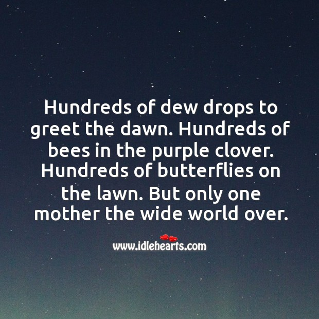 Hundreds of dewdrops to greet the dawn. Image