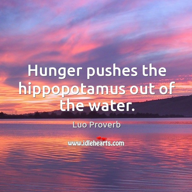 Image, Hunger pushes the hippopotamus out of the water.