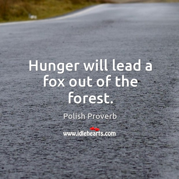 Hunger will lead a fox out of the forest. Polish Proverbs Image