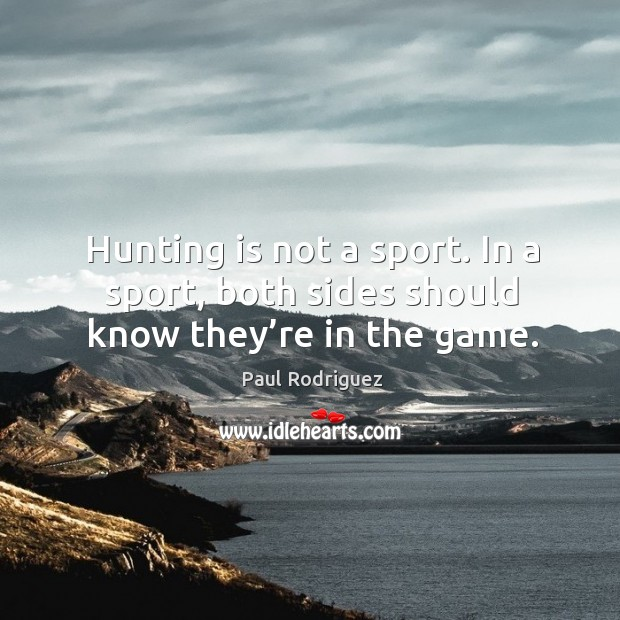 Hunting is not a sport. In a sport, both sides should know they're in the game. Image