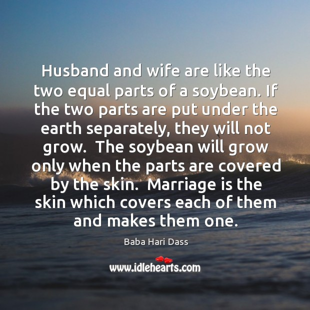 Husband and wife are like the two equal parts of a soybean. Image