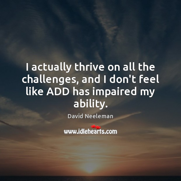 I actually thrive on all the challenges, and I don't feel like David Neeleman Picture Quote