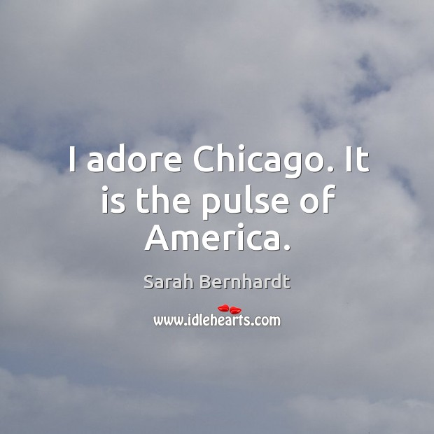 I adore chicago. It is the pulse of america. Sarah Bernhardt Picture Quote