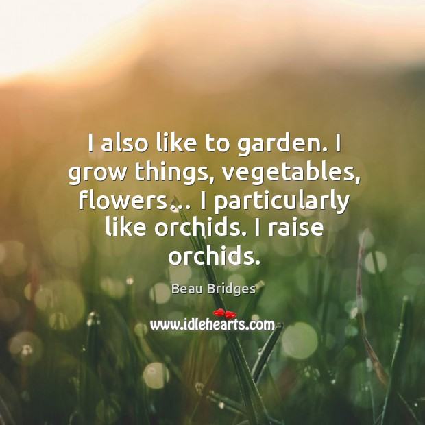 I also like to garden. I grow things, vegetables, flowers… I particularly like orchids. I raise orchids. Beau Bridges Picture Quote