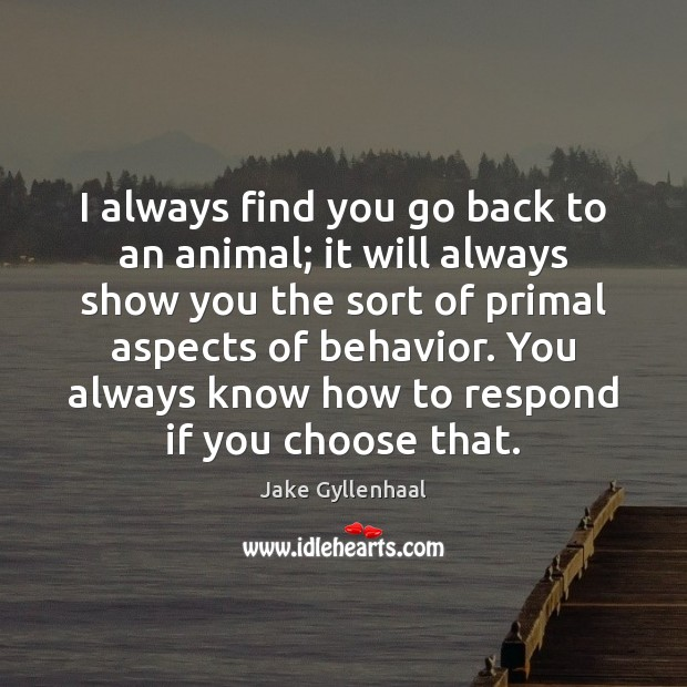 I always find you go back to an animal; it will always Jake Gyllenhaal Picture Quote