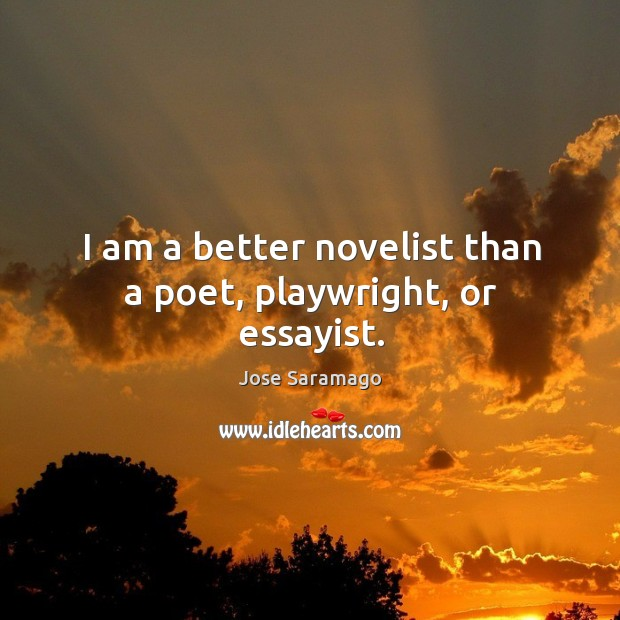 Image, I am a better novelist than a poet, playwright, or essayist.
