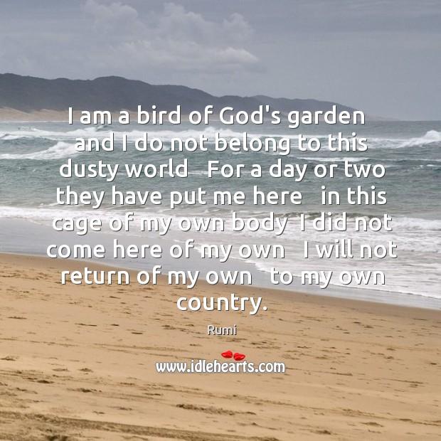 I am a bird of God's garden   and I do not belong Image