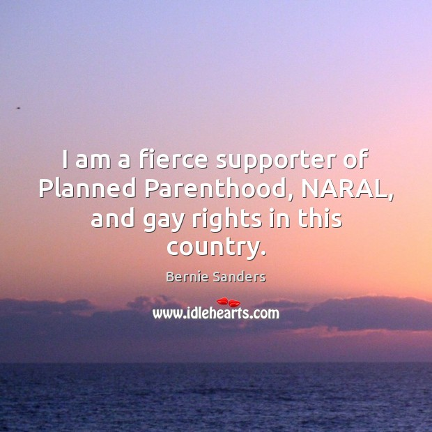 Image, I am a fierce supporter of Planned Parenthood, NARAL, and gay rights in this country.