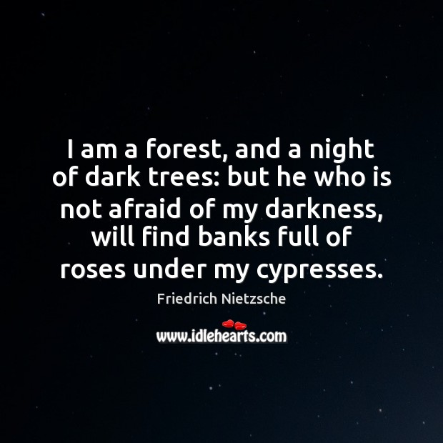 Image, Afraid, Am, Banks, Cypresses, Dark, Dark Trees, Darkness, Find, Forest, Forests, Forests And Trees, Full, He, I Am, Night, Not Afraid, Rose, Roses, Tree, Trees, Under, Who, Will
