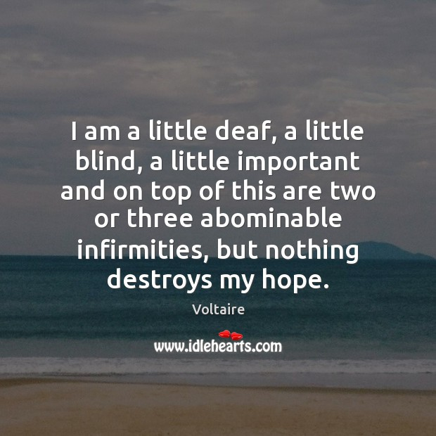 Image, I am a little deaf, a little blind, a little important and