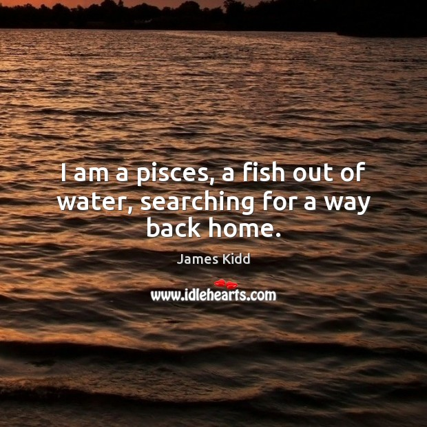 I am a pisces, a fish out of water, searching for a way back home. Image