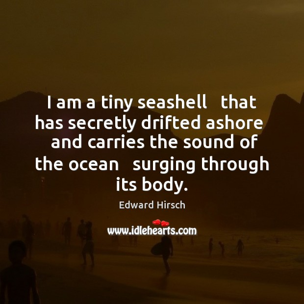 Image, I am a tiny seashell   that has secretly drifted ashore   and carries