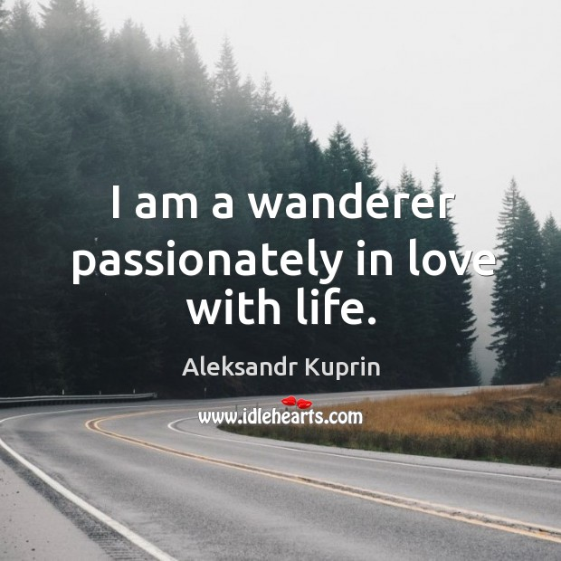 Image, I am a wanderer passionately in love with life.