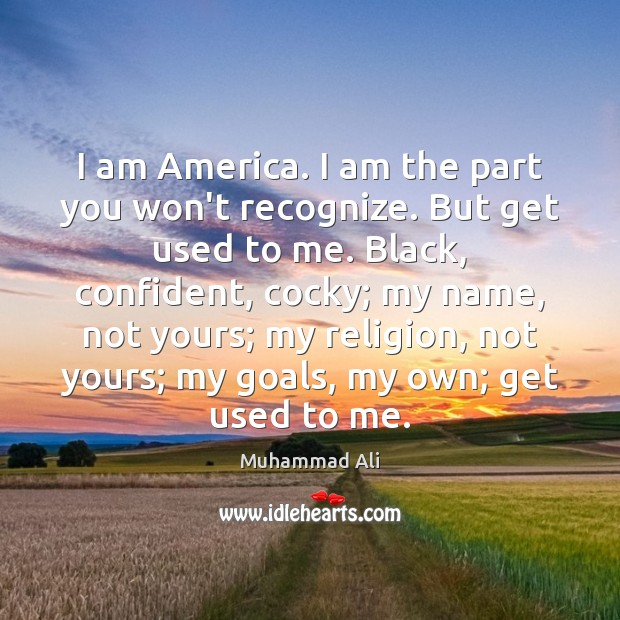 Image, I am America. I am the part you won't recognize. But get