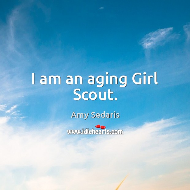 Image, I am an aging Girl Scout.