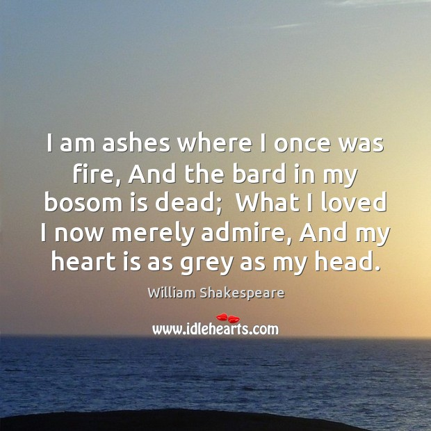 I am ashes where I once was fire, And the bard in Image