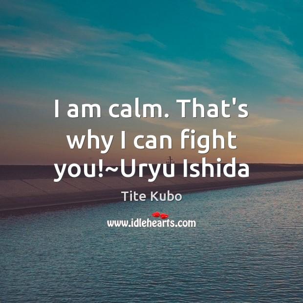 I am calm. That's why I can fight you!~Uryu Ishida Image