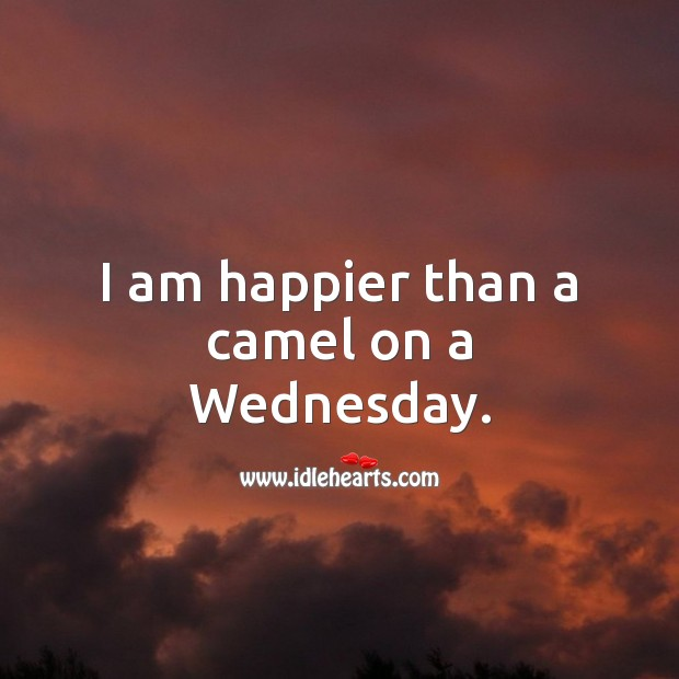 I am happier than a camel on a Wednesday. Wednesday Quotes Image