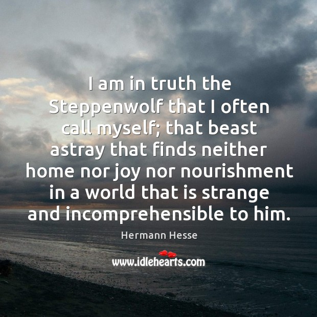 Image, I am in truth the Steppenwolf that I often call myself; that