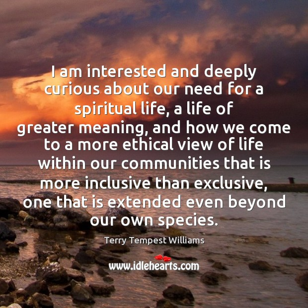 I am interested and deeply curious about our need for a spiritual Image